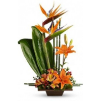 artistic-flowers-in-portland-or-and-lake-oswego-exotic-days-flower-arrangement.